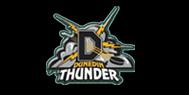 Dunedin Thunder