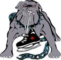 Thunder Bay Bulldogs.jpg
