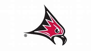 Wisconsin-River Falls Falcons women's ice hockey