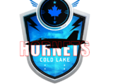 Cold Lake Hornets