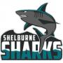 Shelburne Sharks.png
