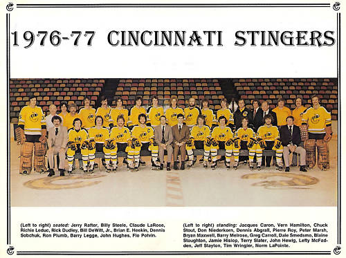 1976–77 Cincinnati Stingers season
