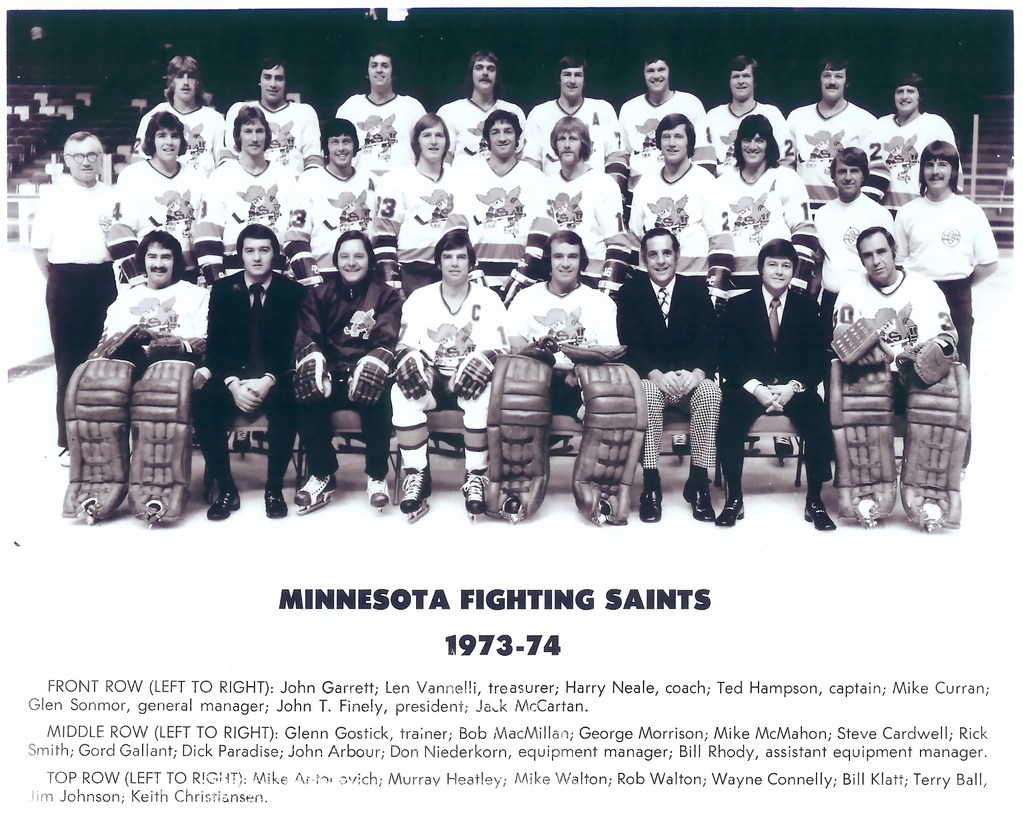 1973–74 Minnesota Fighting Saints season