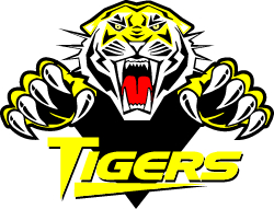 Vermilion Tigers