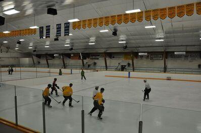 Tom Forsyth Memorial Arena.jpg