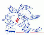 Danville Fighting Saints for the 1987-88.jpg