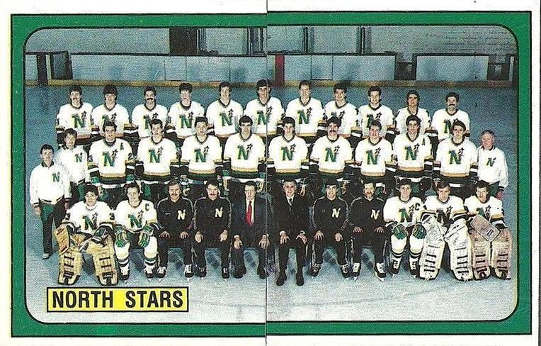 1988–89 Minnesota North Stars season