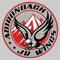 Adirondack Jr Wings Logo.jpg