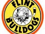 Flint Bulldogs