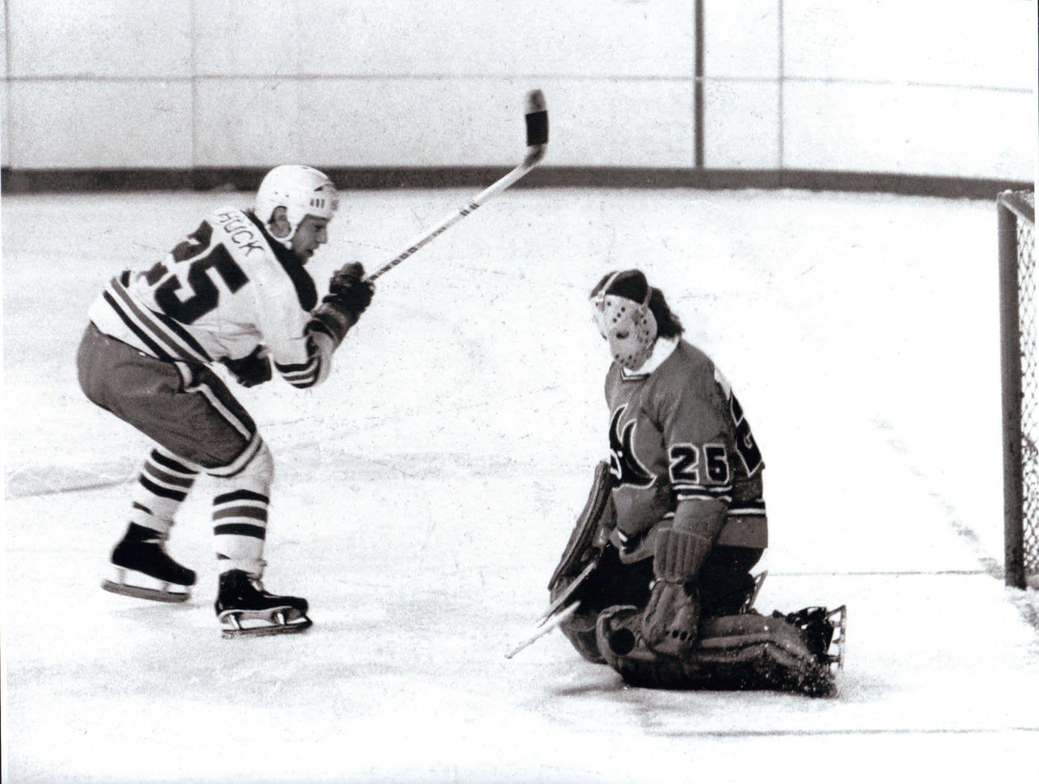 1973–74 Winnipeg Jets season