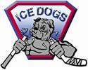 Sydney Ice Dogs