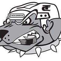 logo as Hounds 2013-2016