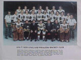 1976–77 New England Whalers season