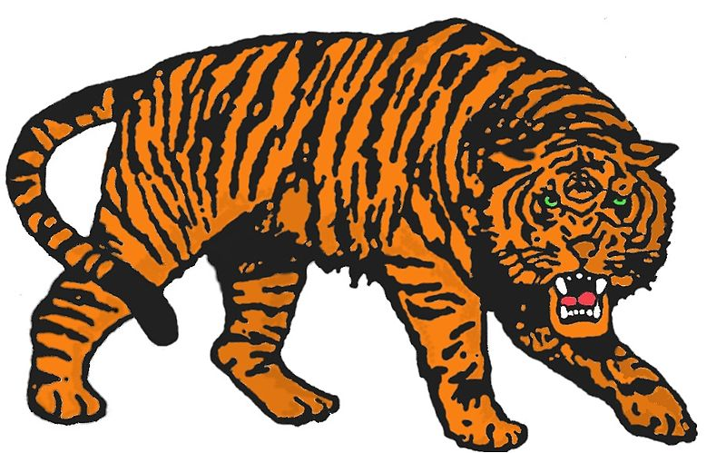 Kinistino Tigers