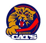 Port huron border cats.png