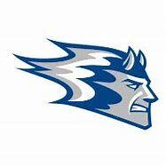Wisconsin-Stout Blue Devils.jpg