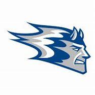 Wisconsin-Stout Blue Devils men's ice hockey