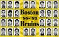 88-89BosBru