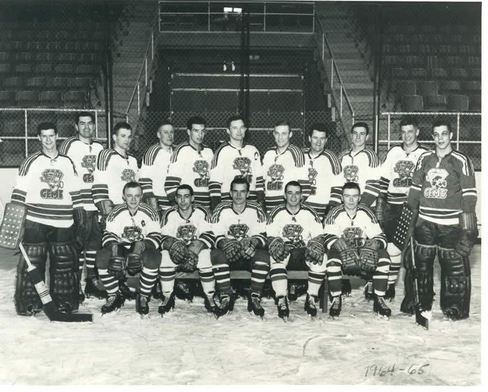 1964-65 IHL season