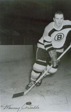 Murray Costello
