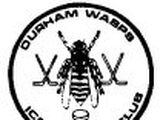 Durham Wasps