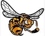 Alvinston Killer Bees.jpg