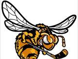 Alvinston Killer Bees