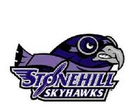 Stonehill Skyhawks logo.png