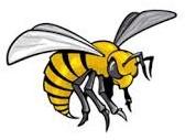 Ashern Hornets