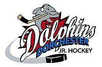 Dorchester Dolphins.jpg