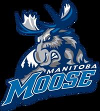 ManitobaMoose 2015.png