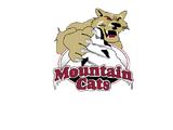 Michigan Mountain Cats