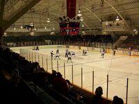 William Allman Arena.JPG