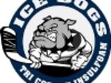 Georgetown IceDogs