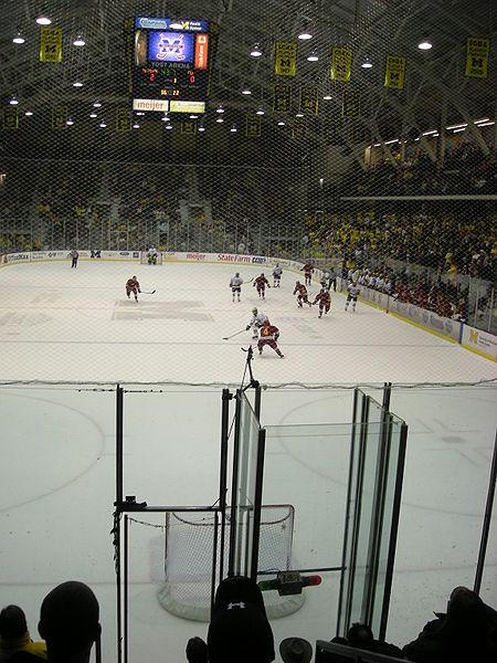 Empty net goal