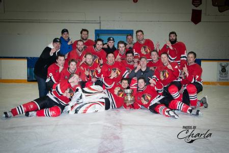 2013-14 BLHL Season