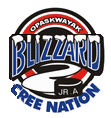 OCN Blizzard.png