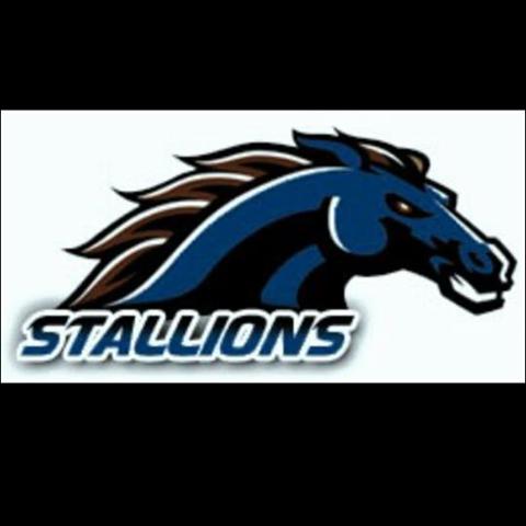 Montague Stallions
