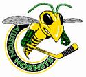 Alliston Hornets