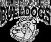 previous team logo