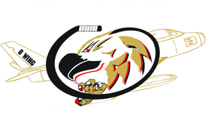 Older team logo