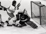 1975–76 Winnipeg Jets season