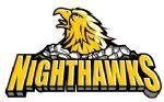 Connecticut Nighthawks.jpg