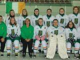 2013 IIHF Women's World Championship Division II