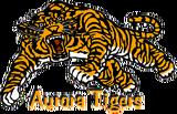 Aurora Tigers.png