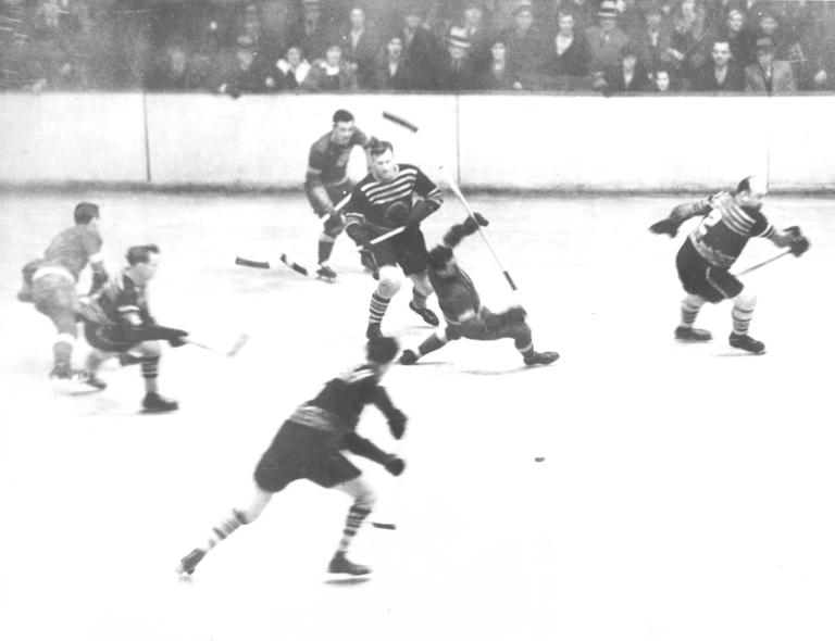 1933–34 Detroit Red Wings season