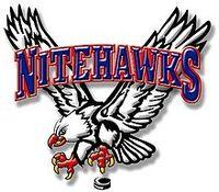 Beaver Valley Nitehawks Logo.jpg