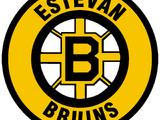 Estevan Bruins