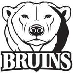 Mississauga Bruins