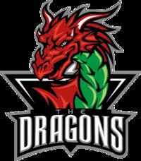 Deeside Dragons